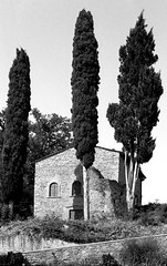 Vespignano (Mattia Camellini) Tags: vespignano toscana tuscany italy minox35el fomapan100 id11 analog pellicola 35mm film35mm monochrome bn bw blackandwithe mattiacamellini landscape paesaggio wideangle canoscan9000fmarkii cipressi