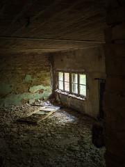 Zentrales Wäschereigebäude Sanatorium für Männer Beelitz-Heilstätten (Ina Hain) Tags: urbex urban architektur olympusem5markii olympus fenster zerfallen verlassen verwaltung heilstätten sanatorium beelitzheilstätten lostplanes zentralewäscherei wohnraum