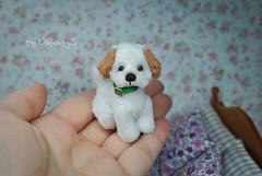 dogdog (Zhanna Zolotina) Tags: teddy dog ooak blythe miniature handmade tinydolhousetoyzz toyzz