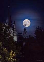 MagicMadrid (invesado) Tags: noche luna madrid mood magic ambiente jeronimos blue nikon d750 tamron 70300