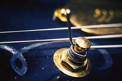 Electric Guitar Tuner (dejankrsmanovic) Tags: tuner electric guitar string tune instrument musical hardware structure detail closeup macro stilllife object partof design style concept conceptual dusty dirty gold metal metallic steel abstract control screw