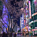 Shinjuku - Tokyo, Japan