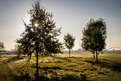 Morgenstimmung (www.altglas-container.de) Tags: sonnenaufgang morgenstimmung rheinhausen landschaft natur duisburg