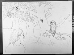 ProgressUpdate (Alex Hiam) Tags: drawing illustration sketch pen ink owl barnowl birds evening night forest trees girl nature landscape hiam