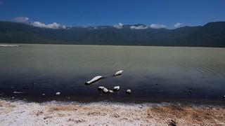 IMGP3576 Empakaai Crater, salt lake