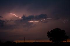 Ravenna, Italy (falangalaura94) Tags: storm ravenna camerlona countryside sunset thunder lightning tree romagna italy clouds nature electricity canon eos1300d
