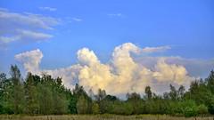 clouds and a dragon (Adam Żabiński) Tags: sky clouds pejzaż krajobraz niebo chmury landscape adamzphotography