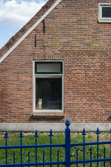 Zeegse (Jeroen Hillenga) Tags: wall muur huisje huis house raam window kat cat tuinhek zeegse drenthe netherlands nederland