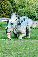 _DSC1361.jpg (Kaminscy) Tags: dinosaurpark dinosaur roztocze krasnobrod europe triceratops poland krasnobród lubelskie pl