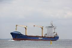 FESCO ASKOLD (angelo vlassenrood) Tags: ship vessel nederland netherlands photo shoot shot photoshot picture westerschelde boot schip canon angelo walsoorden cargo container fescoaskold