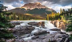 DSC_9167 (Rinathq) Tags: canada athabasca falls waterfalls alberta jasper hdr landscape wideangle nikon d7200 nature mountains summer natgeo