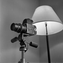 test (silverhalidedreamer) Tags: rolleiflex35a xenar blackandwhite 120film