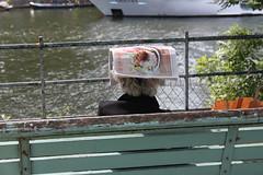 Couvre-chef improvisé (philippeguillot21) Tags: chapeau couvrechef banc paris seine france europe pixelistes dame lady canon femme woman cheveux hair