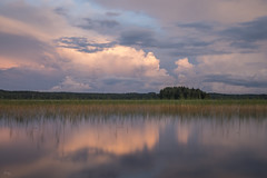 Pink lake in Finland (Richard Holding) Tags: finland finlande lac lake landscape m43 nature olympus omd paysage summer sérénité été