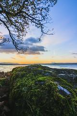 Loch Lomond 2017 (RichGWalker) Tags: scotland sunrise nature landscape loch lomond conic hill wide angle canon 500d sun blue green clouds