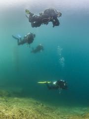 Best Buddies (Knipsbildchenknipser) Tags: farbe color frühling spring see kreidesee hemmoor uw unterwasser tauchen diving scuba scubadiving