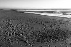 Ôl-traed yn y tywod / Empreintes de pas dans le sable (Rhisiart Hincks) Tags: llonydd ciúin sioul footprints ôltraed duagwyn dubhagusbán dubhagusgeal zuribeltz blackandwhite blancoynegro beach traezhenn traezh trá tràigh playa plaja hondartza plage traeth occitania europe ewrop euronat