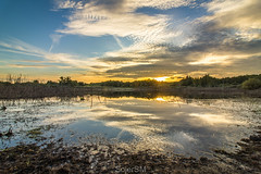 Polychromatic sunset (SojerSM) Tags: landscape sunset clouds sky evening pond reflections water colours golden hour hdr canon eos 1200d photography nature outdoor background view