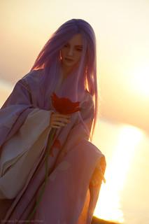 Morpheus_sunset19