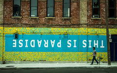 Graffiti Alley - May 31, 2018 (Katherine Ridgley) Tags: thisisparadise toronto mural art downtown city urban street streetphotography streetart paint building wall man walk walking pedestrian brick sidewalk