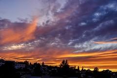 Sunset View (jonarnefoss2013) Tags: fujifilmxt2 norge norway høyenhall oslo solnedgang sunset