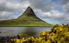 The pyramid of Iceland (katrin glaesmann) Tags: iceland kirkjufell snæfellsnes unterwegsmiticelandtours photographyholidaywithicelandtours reflection spiegelung sea kelp seaweed knotentangoderblasentangichbinmirnichtsicher longexposure ndfilter