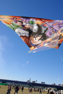 Fly Goku Fly!