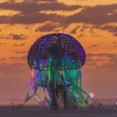 Burning Man 2018 (foxgrrl) Tags: bm18 bm2018 brc blackrockcity bloom burningman burningman2018 peterhazel jellyfish sunrise nevada theunitedstatesofamerica geo:country=theunitedstatesofamerica exif:isospeed=1800 exif:focallength=300mm exif:aperture=ƒ40 camera:make=nikon geo:city=blackrockcity exif:make=nikon geo:lat=40792435 geo:state=nevada camera:model=nikond4s exif:model=nikond4s geolocation geo:lon=119207602 exif:lens=3000mmf40