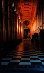 (Mahleriana) Tags: backlight looking close friday