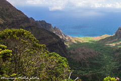 NAPALI KALALAU LOOKOUT 1 4 (MRINMAY MALLIK) Tags: hawaii kauai napali