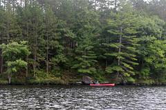 Canoe (scienceduck) Tags: september scienceduck muskoka 2018 canoe lakemuldrew muldrewlake lake water tree muldrew red trees