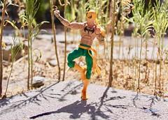 Iron Fist Practicing Tai Chi (westhl) Tags: marvel legends iron fist danny rand immortal kun lun chi tai balance balancing netflix comic comics toy toys action figure figures