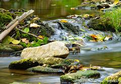 (michael-moll) Tags: fluss gewässer natur nikond7500 langzeitbelichtung rothenburgobdertauber schandtauber