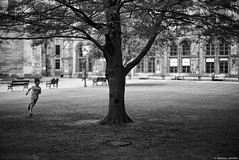Le temps suspendu (Mathieu HENON) Tags: leica leicam noctilux 50mm m240 laphotodulundi monochrome noirblanc blackwhite bnw nb glasgow ecosse scotland gb université arbre enfant course university