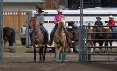 0X0A9789 (Elaine Taschuk) Tags: nicolavalleyrodeo nicolavalley rodeo cowboy horse bull bronco wrestling equine merritt cowgirl bareback steer steerwrestling saddlebronc tiedownroping ladiesbarrelracing barrelracing barrel teamroping bullriding rider cpra prorodeo