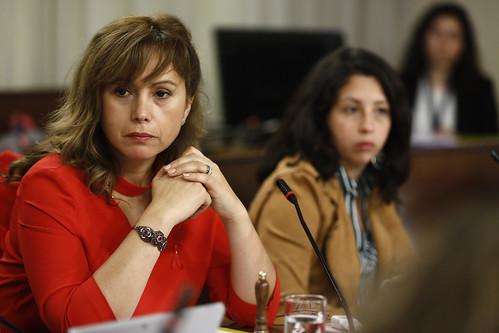Comisión de Mujeres y Equidad de Género