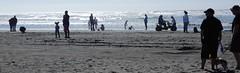 Beach Activities (starmist1) Tags: beachactivites wading walking 4wheeling wind surf kites vehicles people peoplewatching sky seagulls birds summer september
