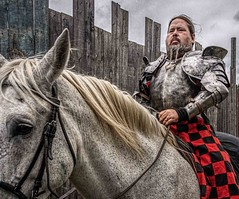 Before The Joust (Wes Iversen) Tags: htt holly michigan michiganrenaissancefestival nikkor18300mm texturaltuesday armor boards fences horses knights mane men people plaid rider texture wood