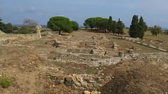 Aleria, the Roman archaeological site (Sokleine) Tags: archéologie archaeology ruins romain vestiges remains romanempire aléria hautecorse 20 corse corsica fouilles ruines oldstones stones pierres