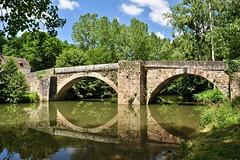 pont du XI ème siècle sur ... (jean-marc losey) Tags: france occitanie aveyron najac pont rivière reflet randonnée d700