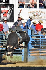 "Baker County Tourism – basecampbaker.com 47196 (Base Camp Baker) Tags: oregon ""easternoregon"" ""bakercountytourism"" basecampbaker ""basecampbaker"" ""bakercounty"" rodeo cowboys ""bakercitybroncandbullriding"" ""bakercity"" ""oregonrodeo"" ""minersjubilee"" oregonrodeo ramrodeo traveloregon travel tourism roughstock rodeolife bulls bullriding"