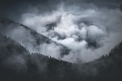 Witches Brew (Michael Bollino) Tags: fog rainier mountrainier nikon induro nationalpark pacificnorthwest bollino washington outside beauty