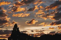 Life goes on. (kaneko_ryo) Tags: eos5dmarkⅳ ef2470mmf28liiusm sky sunset cloud