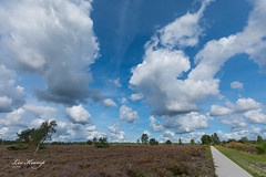 5D4_0104-4.jpg (Leo Kramp) Tags: 2018 weer veluwe wandelen heide wolken flickr natuurfotografie bloemen gortel emst gelderland nederland nl leo leokramp wwwleokrampfotografienl leokrampfotografie websitelandschap web netherlands photography events data plaatsen 2010s