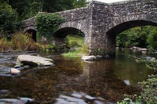 Fingle Bridge II