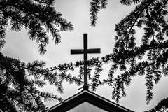 (Abel AP) Tags: cross trees church christian religion religioussymbol christianity hayward california usa bayarea sanfranciscobayarea northerncalifornia blackandwhite bw blackandwhitephotography monochrome bokeh abelalcantarphotography
