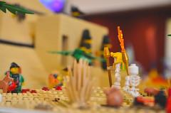 DSC_0091 (skockani) Tags: lego bricks legoland legominifigures cmf minifigures afol toys play fun legomania toyphotography legophotography lug rlug lugskockani legoskockani skockani exibition show