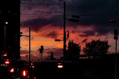 20180904 typhoon is gone. (soyokazeojisan) Tags: japan osaka red tree light clouds people street digital olympus em1markⅱ  12100mm 2018