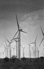wind machines half a mile away, Mojave CA (carlfieler) Tags: infrastructure windmills desert monochrome film 35mm
