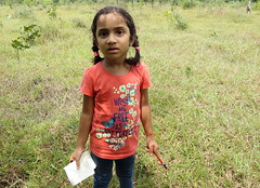IMG_6198 (mohandep) Tags: hessarghatta lakes karnataka butterflies birding nature wildlife insects signs food